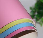 幼儿园地垫儿童房卡通地板室内舞蹈室专用PVC塑胶舞蹈地胶